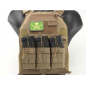 EMERSON PLATE CARRIER 419 COYOTE LBX